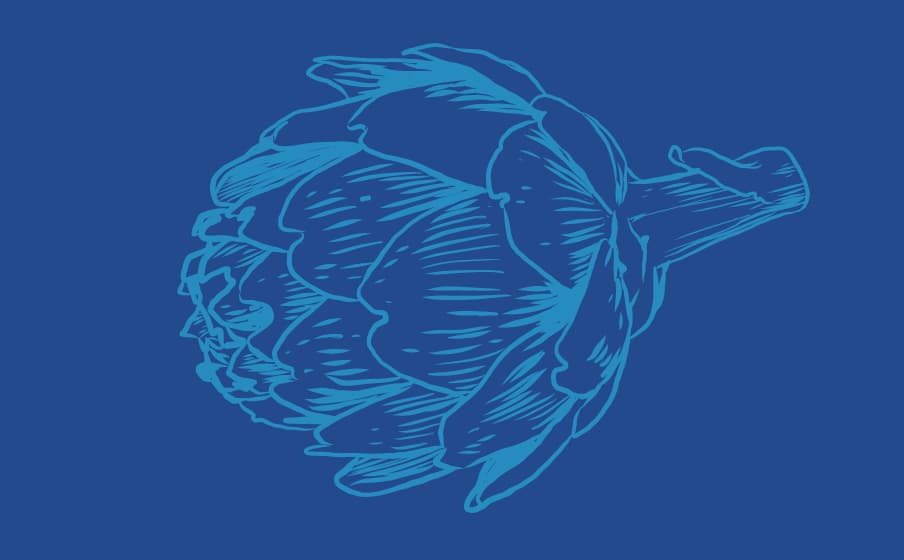 artichaud visuel dessinés au trait bleu sur fond bleu foncé
